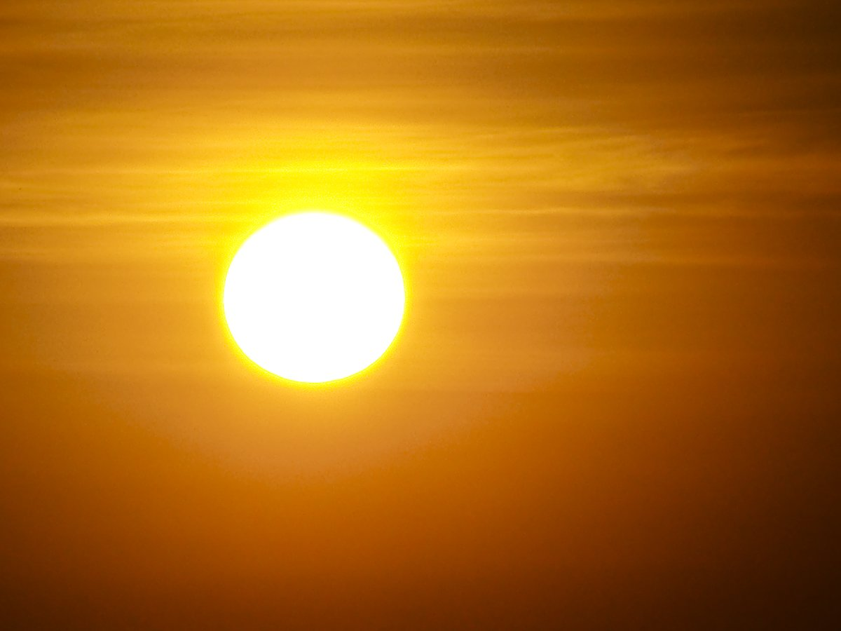 2019 -- Second-warmest year on record